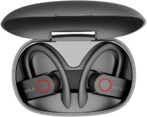 2. Duola Bluetooth 5.0 Earbuds with Ear Hook