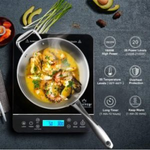 3. Duxtop Portable Induction Cooktop, 9600L T-200DZ
